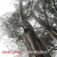 David Crowell: Kaleidoscope