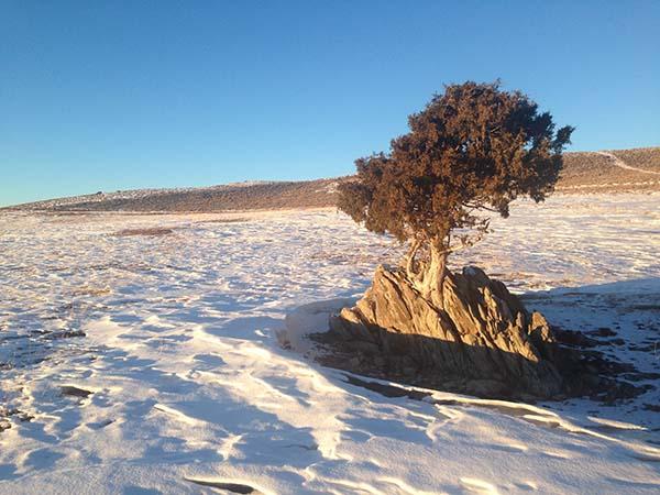 Brush Creek, Wyoming