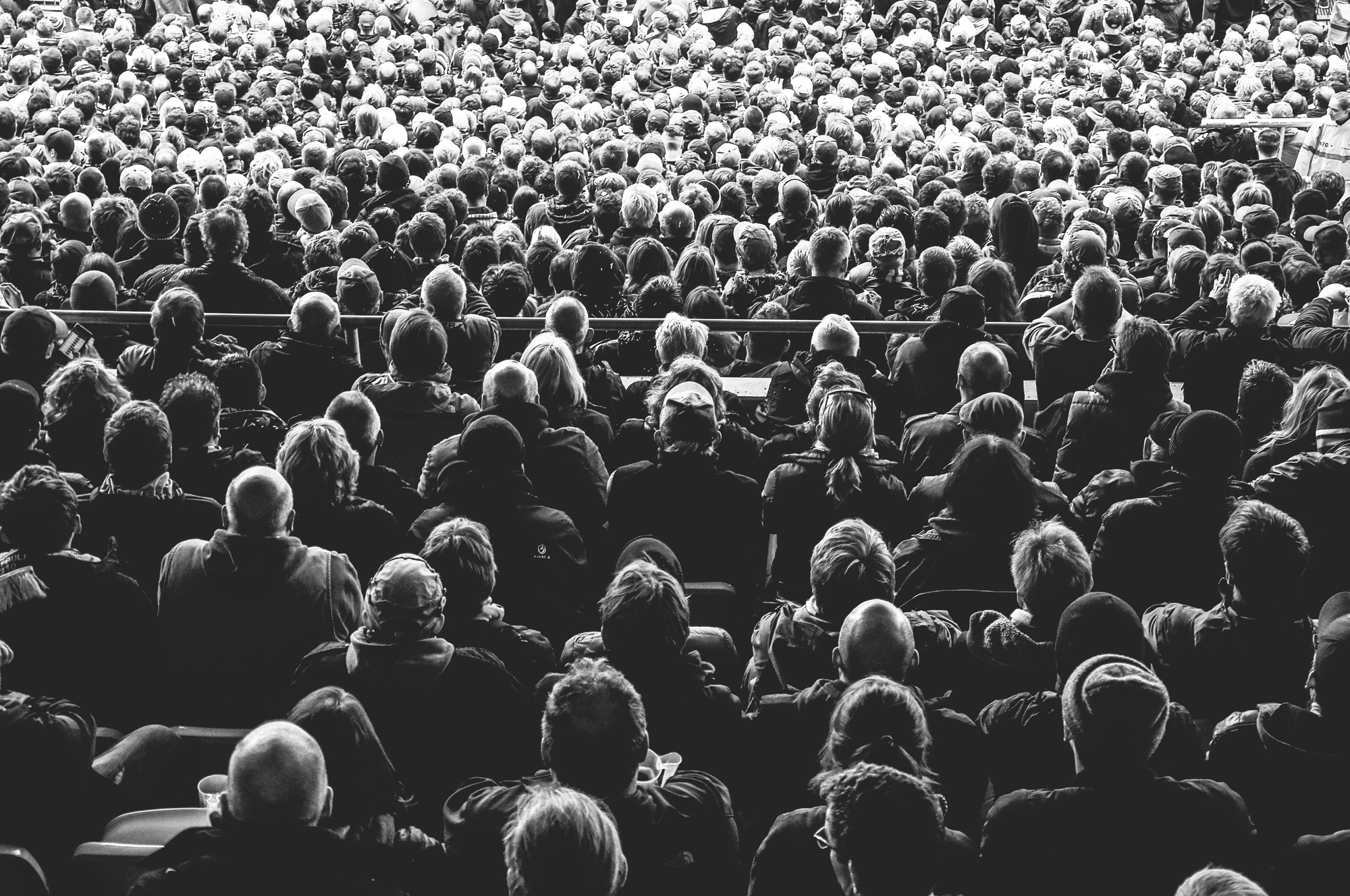 A very large seated group of people photographed from the back (photo by Davide Ragusa).